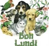 """""""Bonjour / Bonsoir"""" !!! - Page 39 Bon_lu10"""