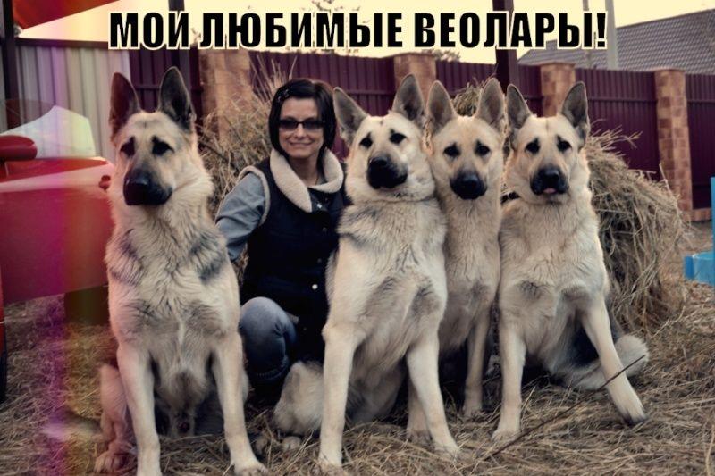 """ФОТОАЛЬБОМ """"НАШИ ВЕО"""" Edezza10"""
