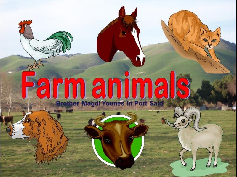 تعرف على اسماء الحيوانات واصواتها بالانجليزية Image_11