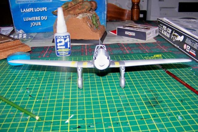 PZL P 23b Karas :  Mirage 1/48 - Page 2 100_0316