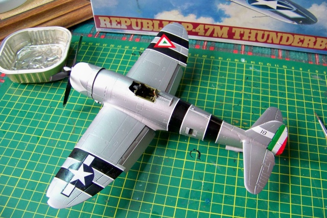 P-47 D-30-RA Tamiya (base P47M modifié)Fini 100_0333