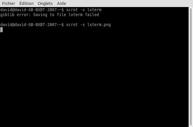 Dump de NAND flash FW 370 sans démontage - Page 2 Lxterm10