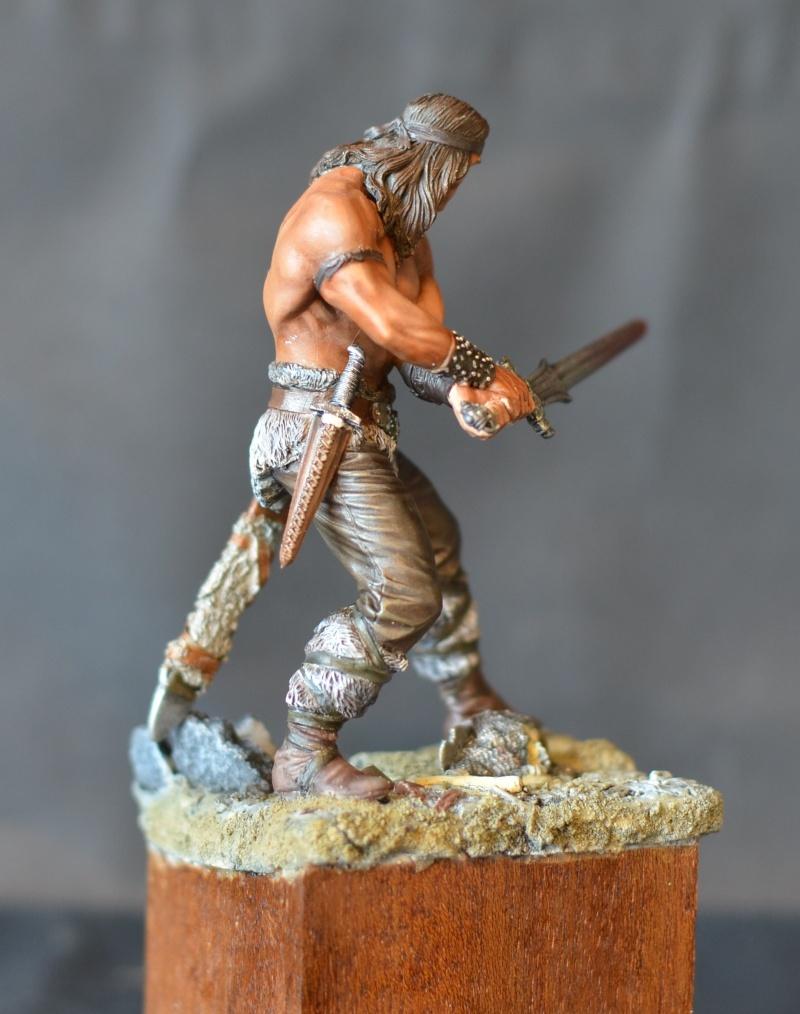 """cimmerian warrior """"conan le barbare""""de chez pegaso Dsc_1017"""