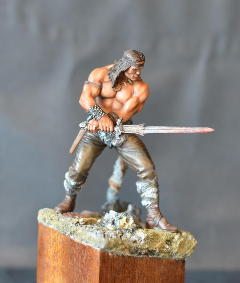 """cimmerian warrior """"conan le barbare""""de chez pegaso Dsc_1018"""