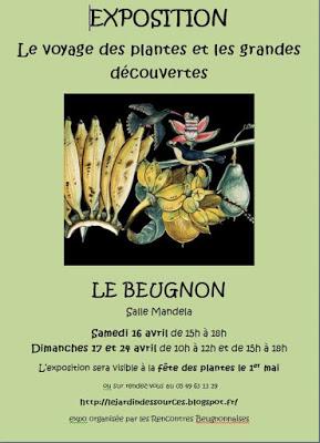 Fête des plantes au BEUGNON  (79) Affich10