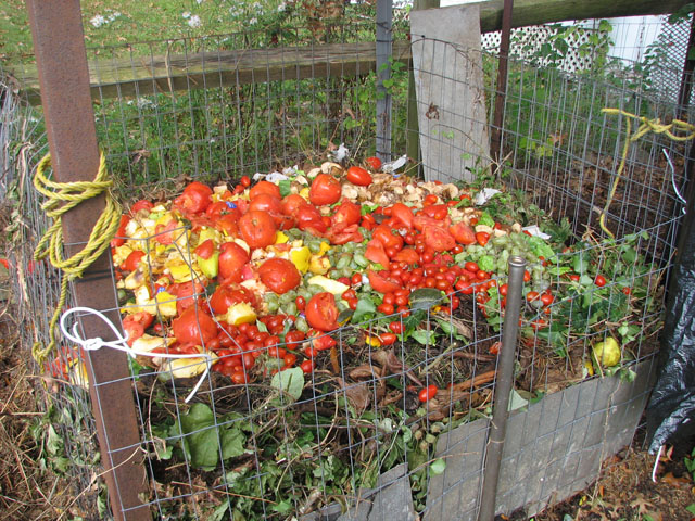 WANTED: Pictures of Compost Bins - Page 2 10_8_111