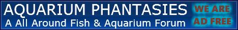 Aquarium Phantasies Ap_ban10