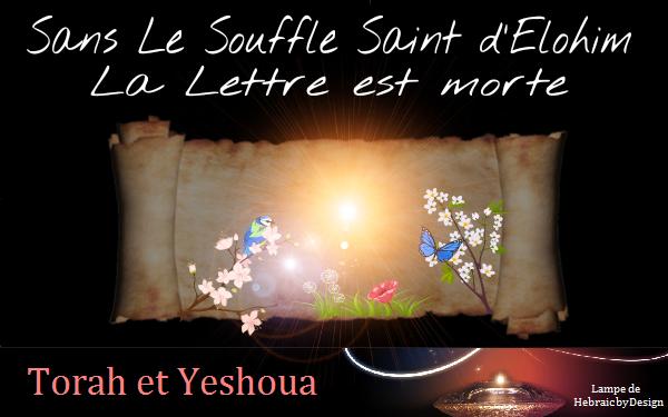 Sans Le Souffle Saint d'Elohim La Lettre est morte Sans_l10