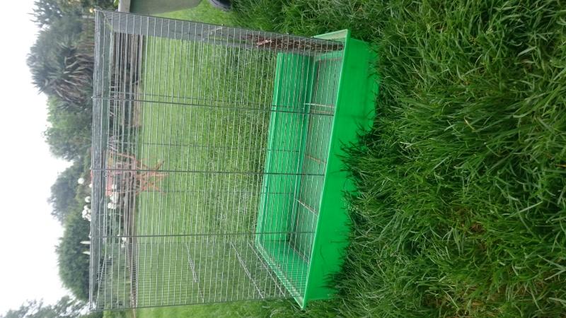 Conseil récupérer une ancienne cage Dsc_0510