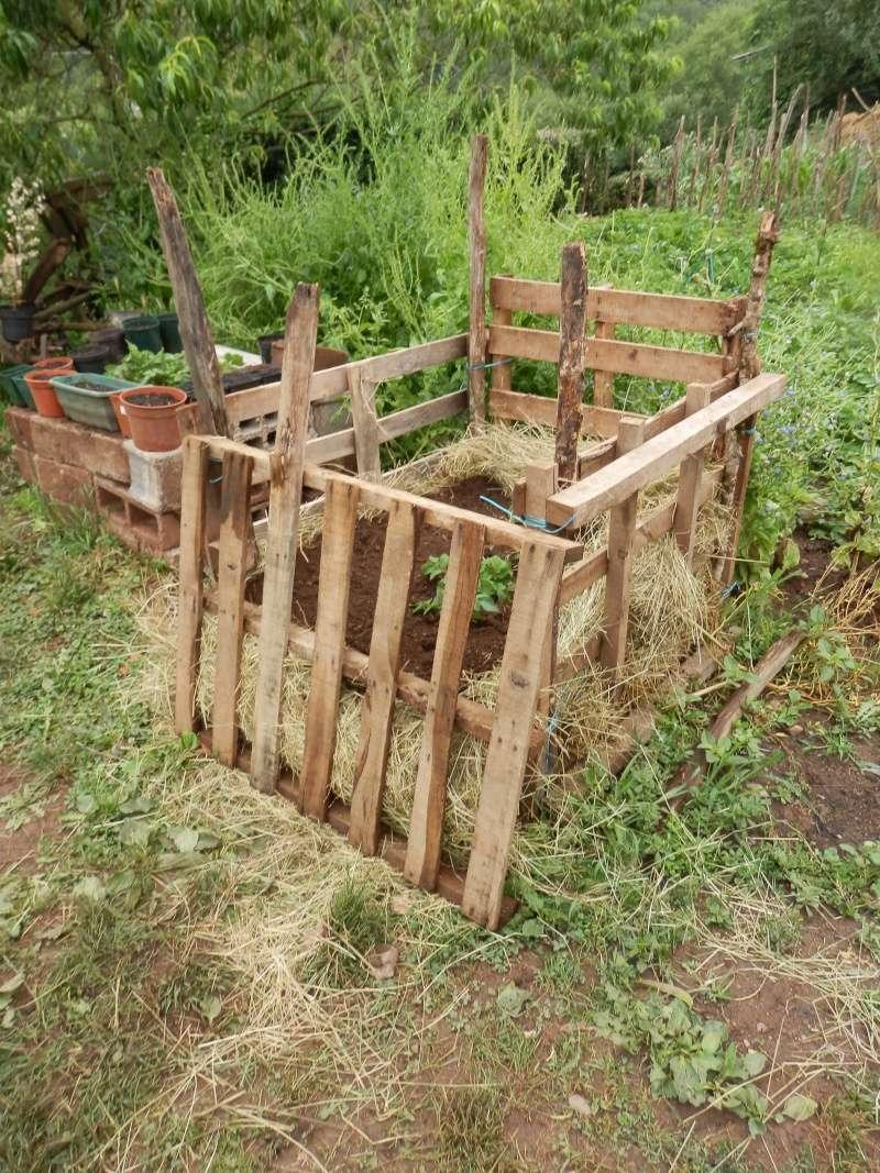 [agri.] Cultiver des patates sur son balcon - Page 2 Potage12