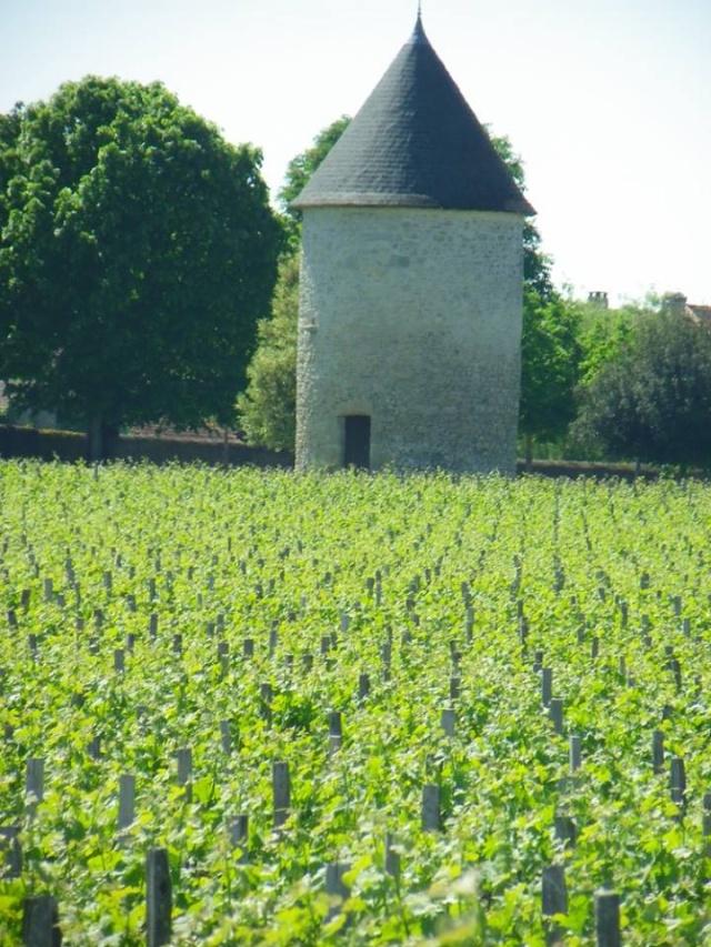 Château Haut Barrail vu par Ghislaine B P 13267910