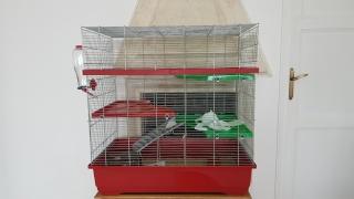 La cage de mes fifilles 22_avr27