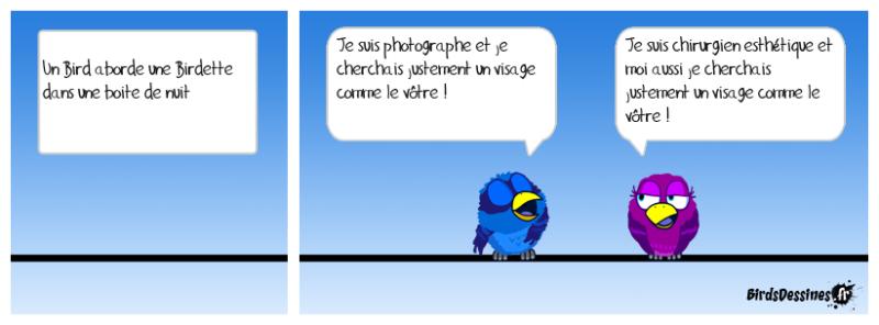 Les Birds - Page 14 Alemyr10