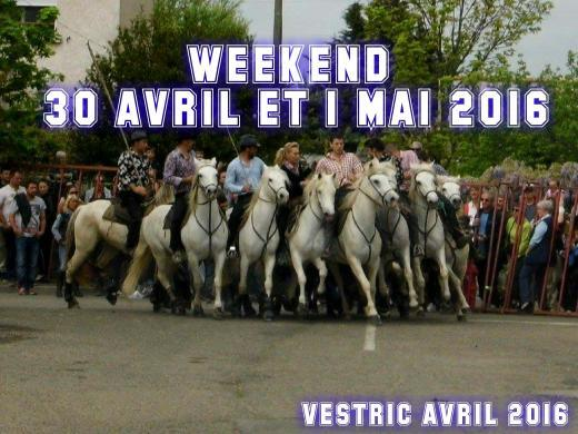 WL BIOU : WEEK 30 AVRIL/1 MAI 2016 +38 MANIFESTATION  30_mai10