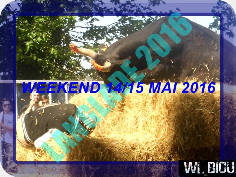 WL BIOU : WEEK 14/15 MAI 2016 +36 MANIFESTATION  Dsci0110