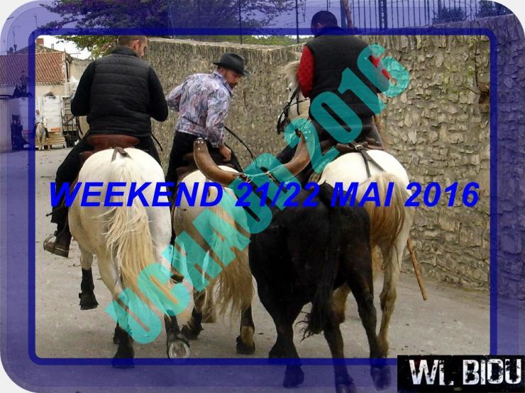 WL BIOU : WEEK 21/22 MAI 2016 +43 MANIFESTATION    Procha10