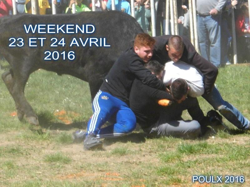 WL BIOU : WEEK 23/24 AVRIL 2016 + 31 MANIFESTATION Week_210