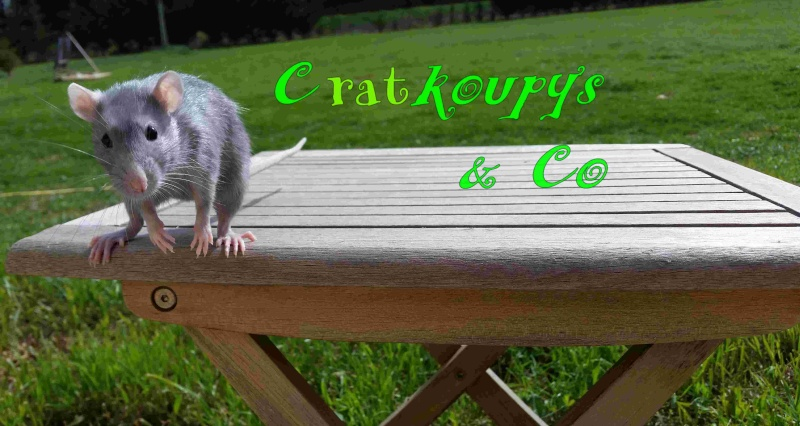 Cratkoupys & Co