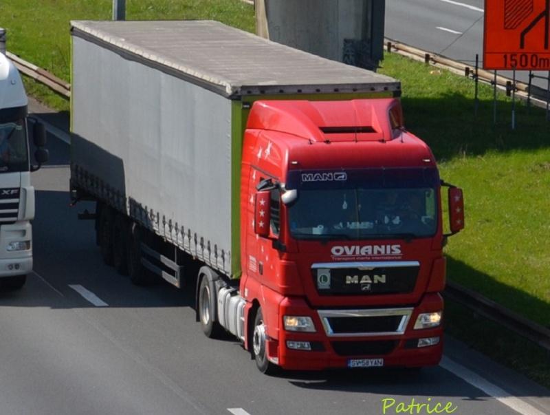 Ovianis  (Suceava) 10610