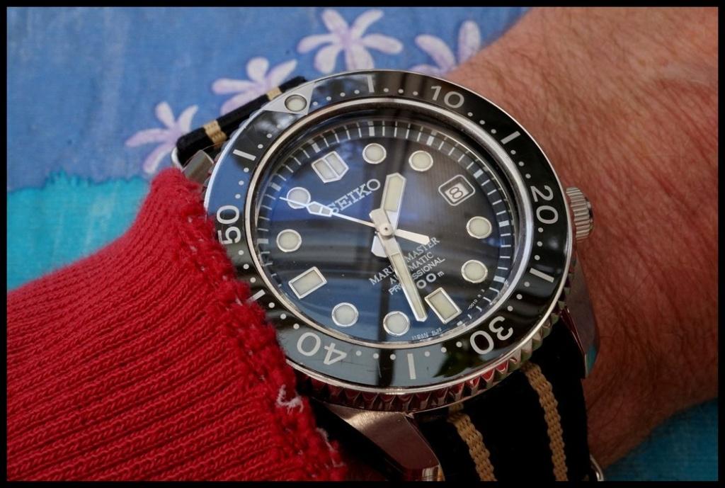La montre du vendredi, le TGIF watch! - Page 20 Rtdsc013