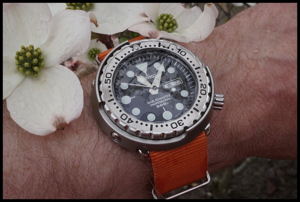 La montre du vendredi, le TGIF watch! - Page 20 Rtdsc029