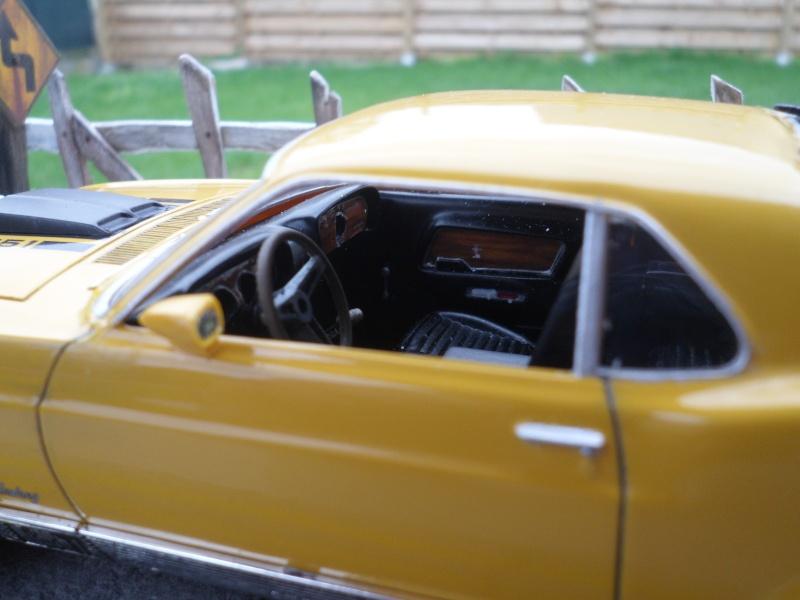 Mustang mach1 1970 Sam_0010