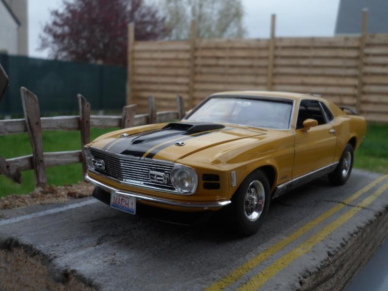 Mustang mach1 1970 Sam_0011