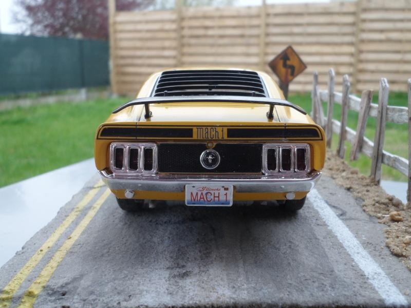 Mustang mach1 1970 Sam_0013