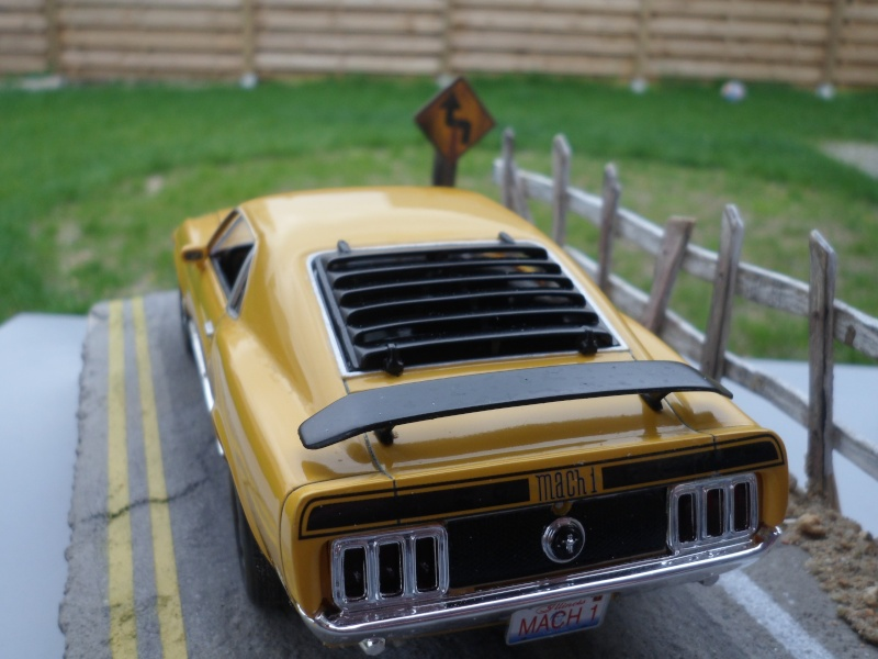 Mustang mach1 1970 Sam_0014