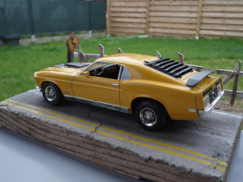 Mustang mach1 1970 Sam_0015
