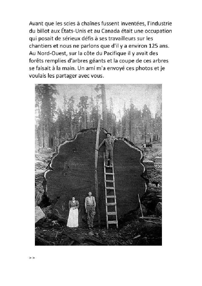 SCIAGE DU BOIS A L'ECHELLE U.S, années 20 Sciage10
