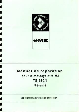 Manuel d'atelier TS 250 et 250/1 Img03111