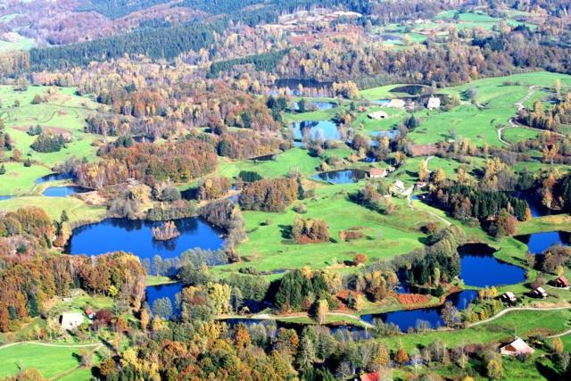 Hivernale des mille étangs 2020 Platea11