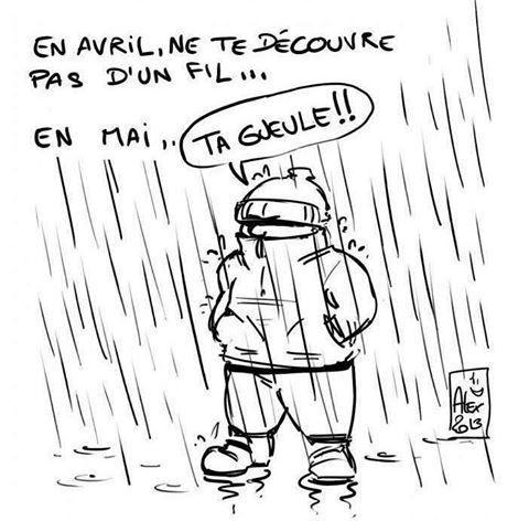 Humour du jour - Page 5 Pluie10
