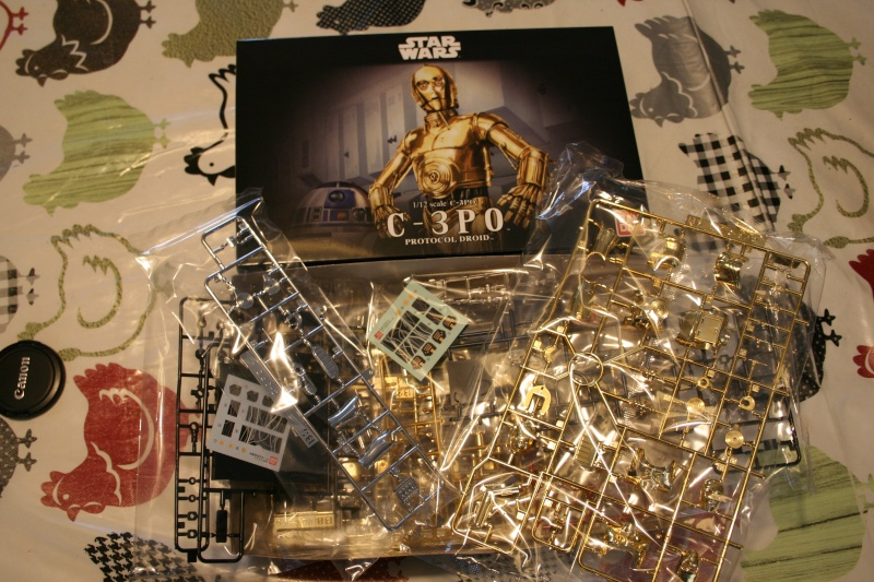 "R2-D2 & C-3PO diorama ""Knockin' on Jabba's door !"" (BANDAI) [WIP] Img_3812"