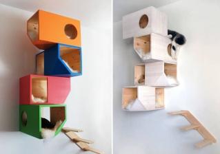 Idées et astuces pour Chiens et chats! - Page 2 12901310