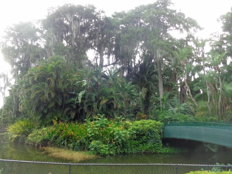 Orlando 2.0 et DCL 1.0 : Nouveau TR d'un vieux et néanmoins fabuleux séjour (aout 2014) - Page 4 13910