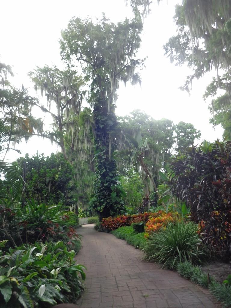 Orlando 2.0 et DCL 1.0 : Nouveau TR d'un vieux et néanmoins fabuleux séjour (aout 2014) - Page 4 14210