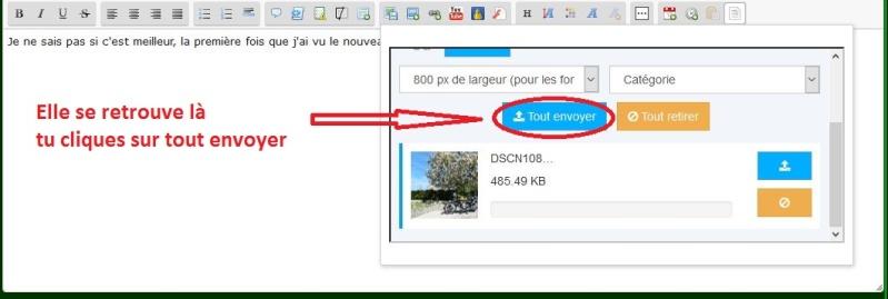 Comment insérer des images dans les messages? Afzn10