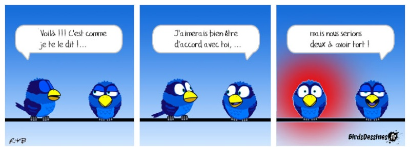 Quelques Birds ? Birds-13