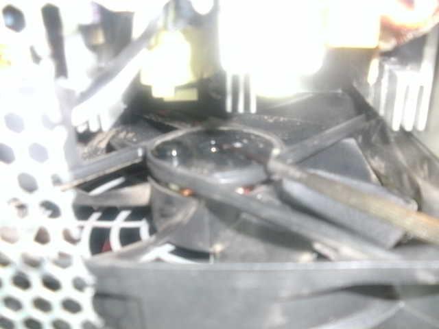 Refilling oil into a PSU-fan. Bild0715
