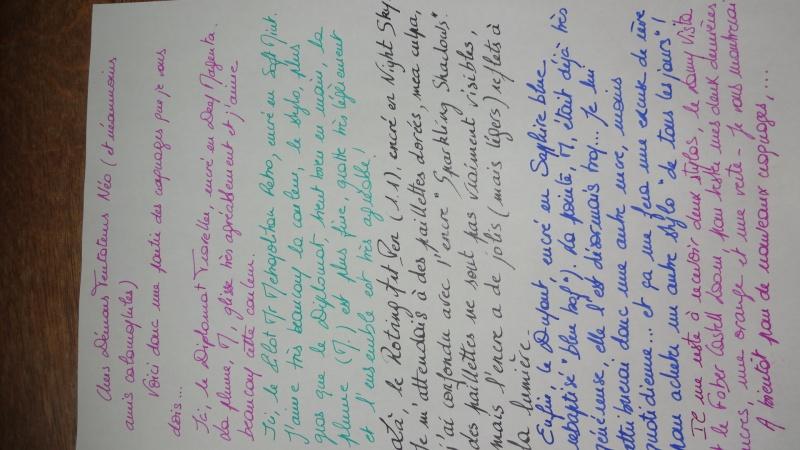 Stylos plume - Page 12 Dsc02513