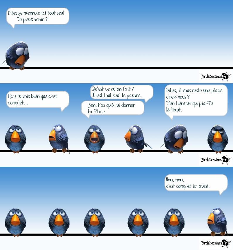 Les Birds Dessinés - Page 3 Aaa10