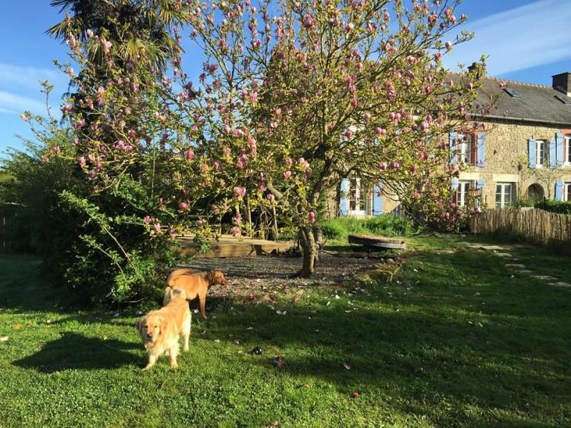 Cani-vacances en Bretagne: une semaine au gîte Ki-Mor + activités canines 13076910