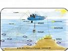 les phares en mer et à terre (2) - Page 6 Th10