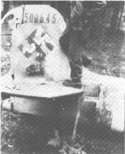 Focke wulf 190 D9 revell 1:32: Sans_t10
