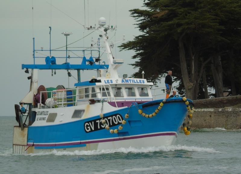 [VIE DES PORTS] Quelques bateaux de pêche (sur nos côtes Françaises) - Page 22 B_anti10