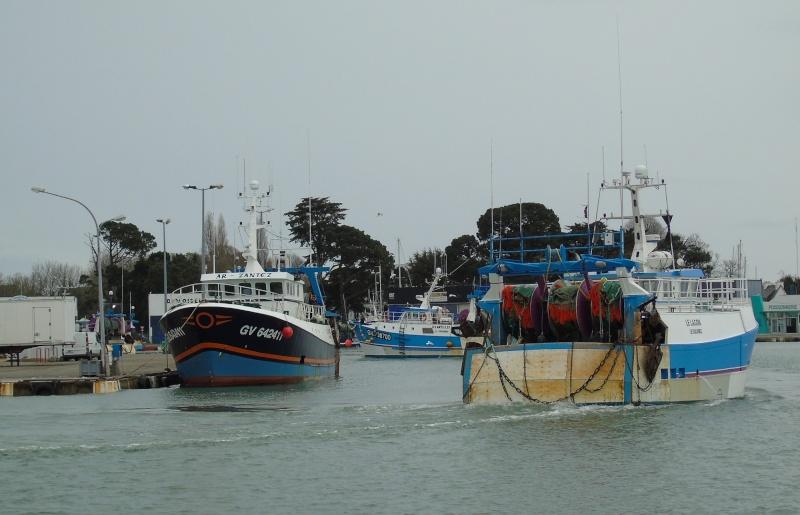 [VIE DES PORTS] Quelques bateaux de pêche (sur nos côtes Françaises) - Page 22 Loc310