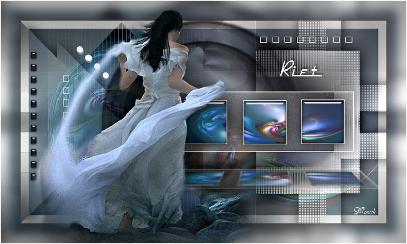 Riet (PSP) Riet10