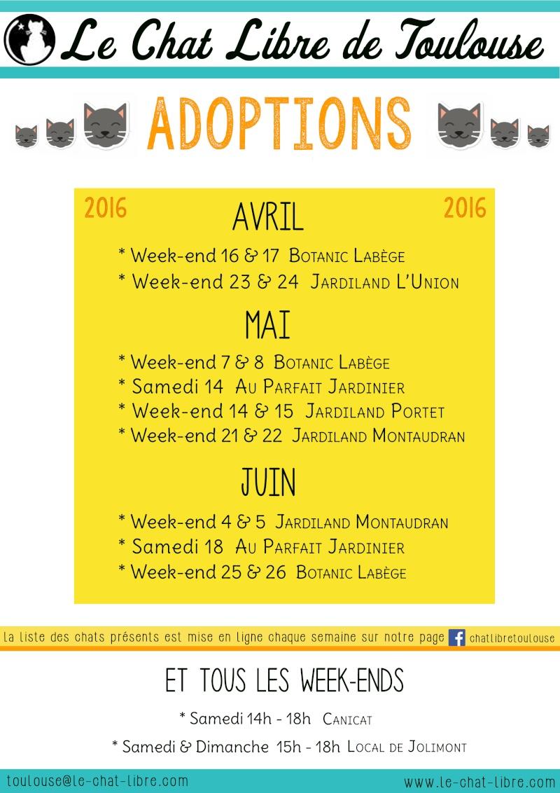 Le planning 2016 des journées adoption 08-04-11